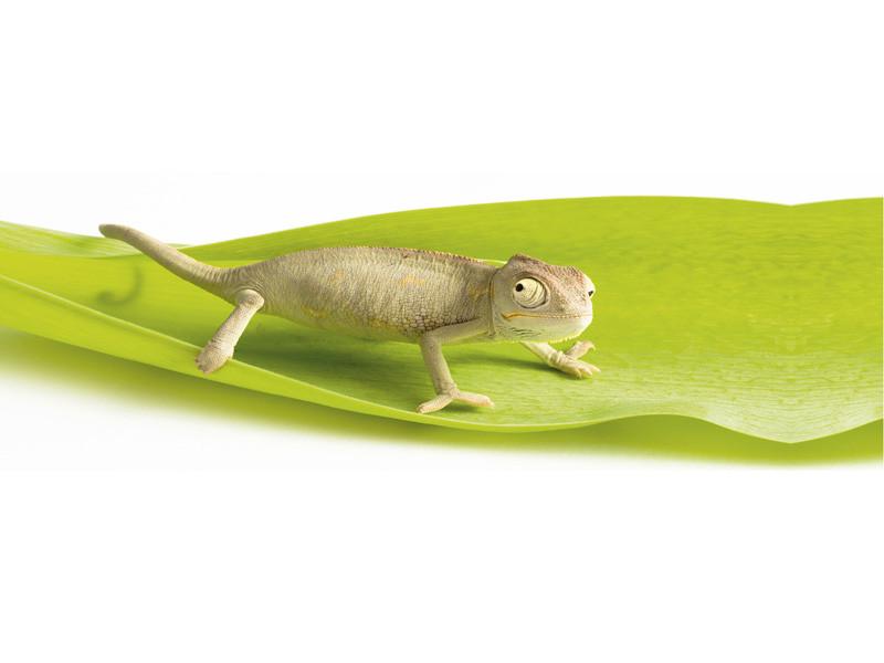 Dekoracja łazienkowa Chameleon Slim